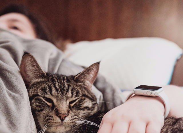 person resting in bed, cuddling cat