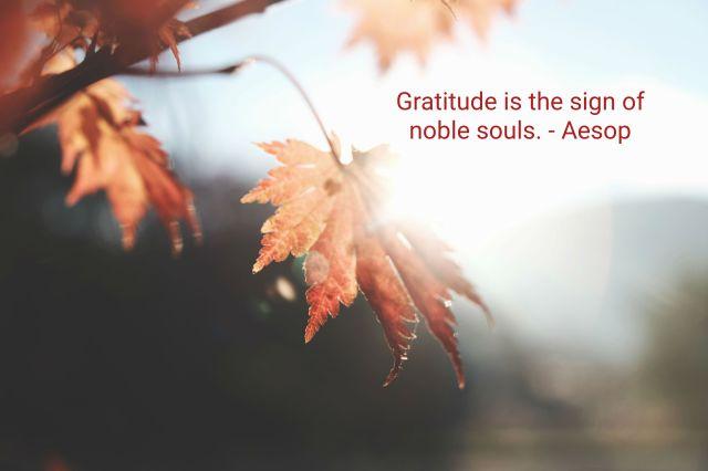Aesop quote gratitude