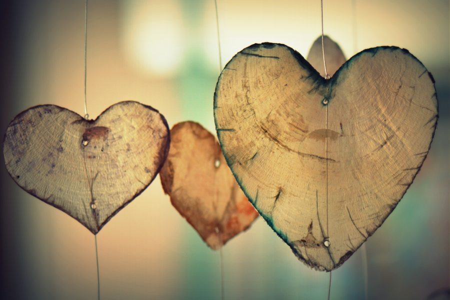 pictures of papery, leafy hearts - representations of things I appreciate