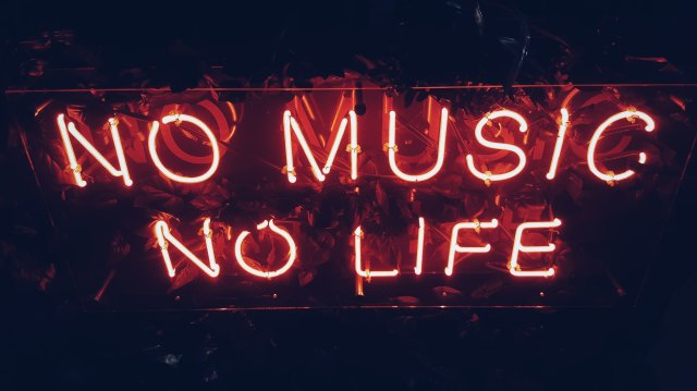 no music no life photo