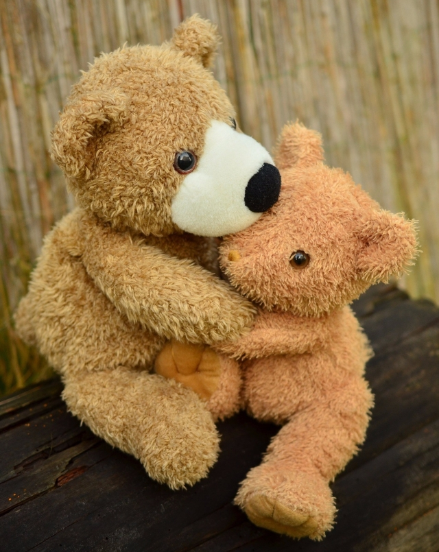 warm teddy bear hug