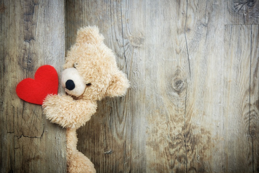 signs an INTP likes you and might be interested in you - bear holding heart