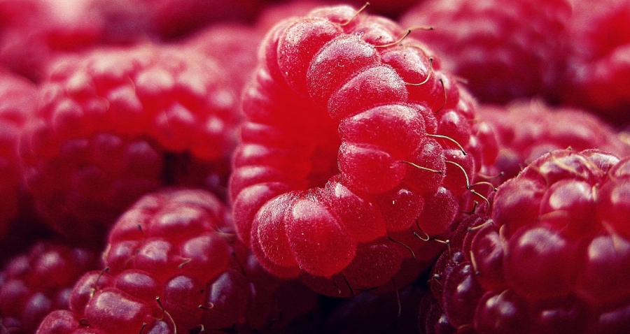 raspberries - foods I can and can't eat #restricteddiet #glutenfree #food #nutrition