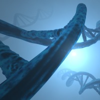 Fallacies - Genetic Fallacy