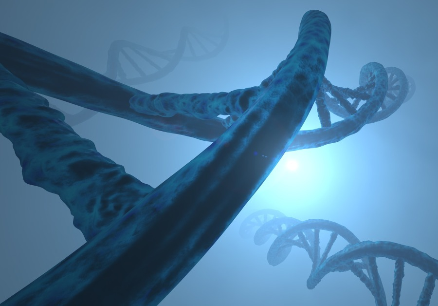 genetic fallacy - fallacies - logic - DNA - deoxyribonucleic acid